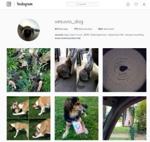 ves_instagram